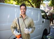 Benefícios da contratação de um serviço de dedetização