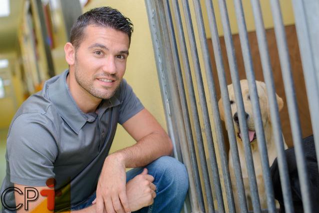 Hotel para cães e gatos: dicas de bom funcionamento   Dicas Cursos CPT