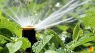 A irrigação por aspersão convencional
