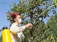A adubação foliar e suas vantagens para as plantas