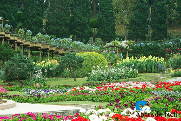 Paisagem de Jardim