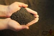 Análise granulométrica do solo