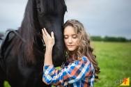 Comprando o cavalo ideal para você