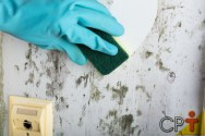 Você sabe limpar paredes de alvenaria?