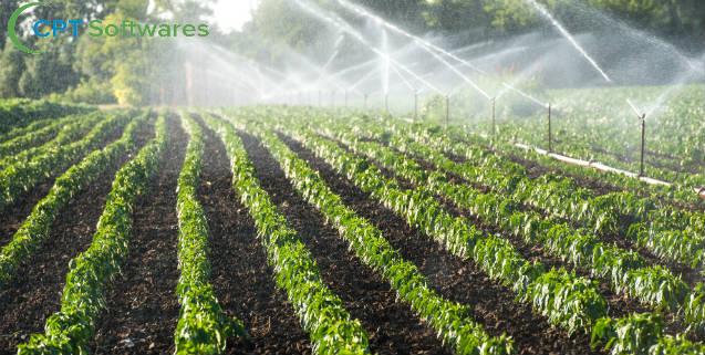 Veja como economizar água na irrigação