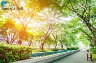 Livro atualizado – Árvores para o Ambiente Urbano