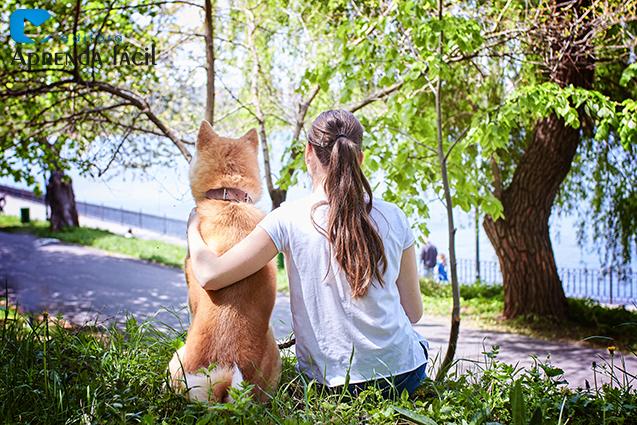 Mulher e cachorro sentados à sombra de uma árvore
