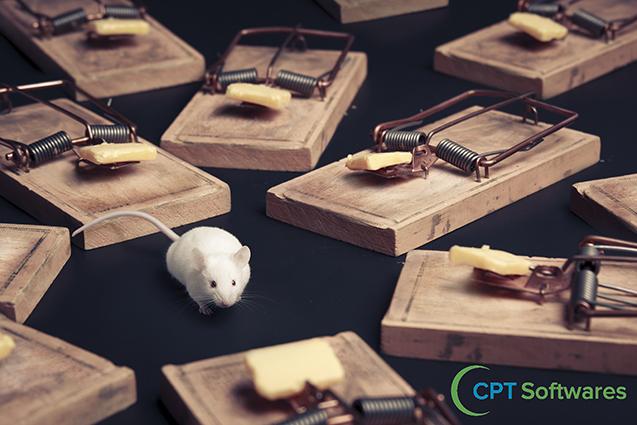Iscas e armadilhas para ratos