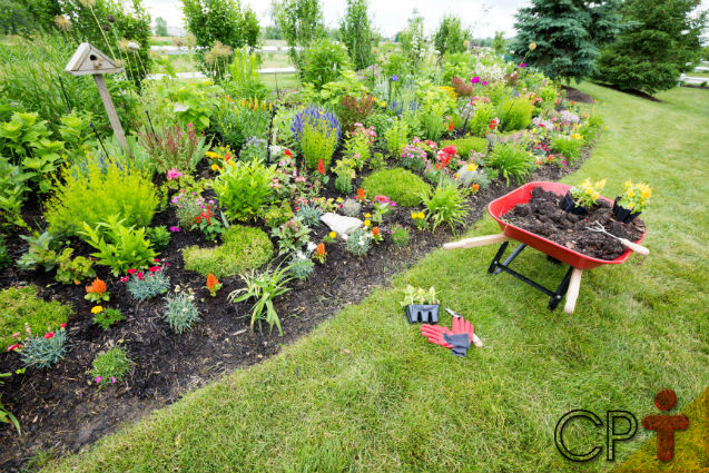 Manutenção de jardins: adubação   Artigos Cursos CPT