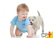 Por que a fase de socialização é importante para os cães?