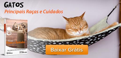 E-book Gatos - Principais Raças e Cuidados