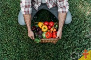A agricultura orgânica pode abastecer a demanda mundial?