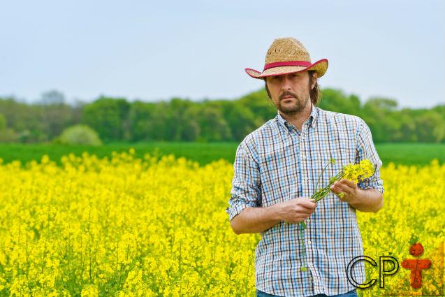 Agroecossistema sustentável: sonho ou realidade?   Artigos Cursos CPT