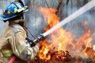 Evite e combata queimadas