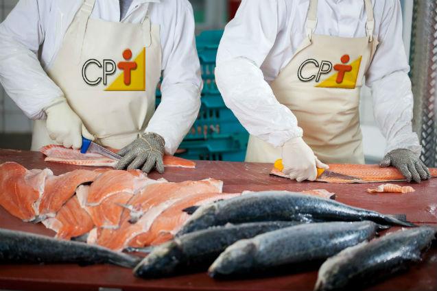 Vou processar carne de peixes: com o que devo me preocupar?   Artigos Cursos CPT