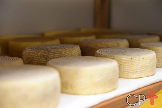 Surpreenda com o queijo de leite em pó