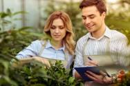 Qual o segredo das empresas agrícolas de sucesso? Planejamento!