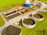 Biodigestores: produção e manutenção do biogás