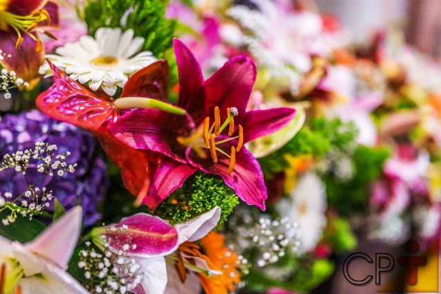 Floricultura: época de florescimento de flores comerciais   Dicas Cursos CPT
