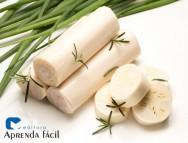 Saiba mais sobre produção de pupunha