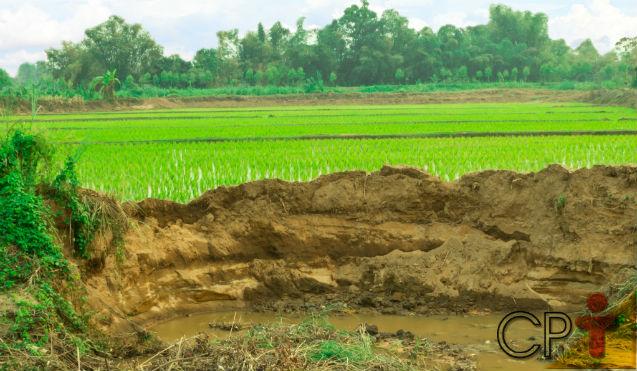 EROSÃO: ré ou vilã dos solos, da natureza e do homem?   Para Refletir Cursos CPT