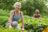 Mercado de orgânicos pode aumentar em até 20% ainda esse ano