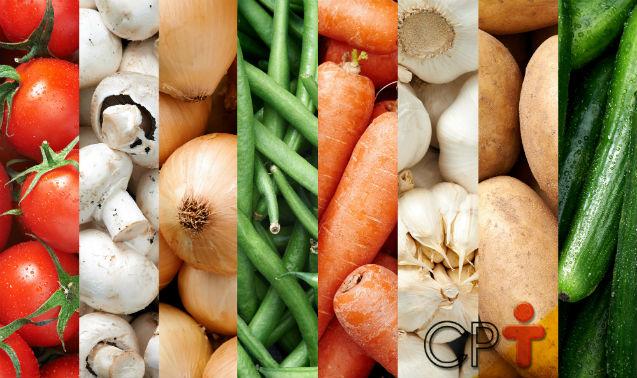 Agricultura orgânica tem de fazer rotação e sucessão de cultura   Dicas Cursos CPT