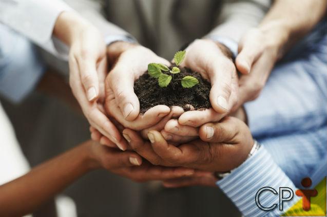 Diversificação e equilíbrio ecológico: o que dizer sobre isso?   Artigos Cursos CPT