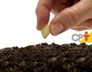 O solo: elemento mais importante do setor produtivo, diz especialista