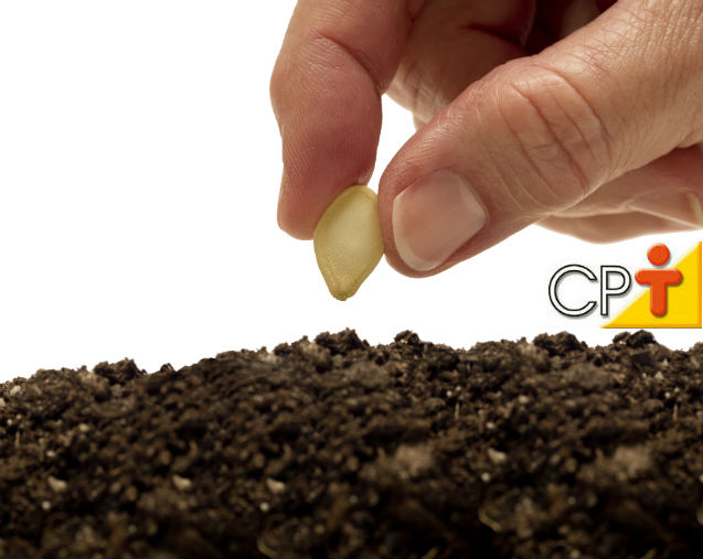 O solo: elemento mais importante do setor produtivo   Notícias  Cursos CPT