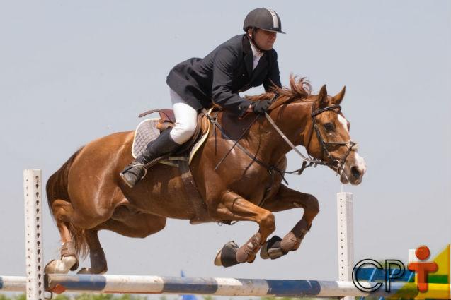 Tire sua dúvida: as patas de cavalo têm amortecimento?   Dicas Cursos CPT