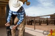 Tire sua dúvida: há diferença entre os quatro cascos de um cavalo?