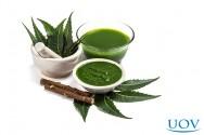 Benefícios do neem para o cabelo