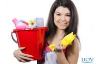 É vantajoso fabricar e vender produtos de limpeza?