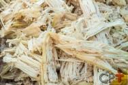Substratos utilizados no cultivo do milho hidropônico
