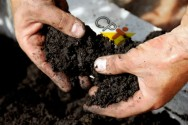 Benefícios da compostagem orgânica para o solo