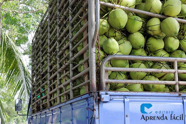 Transporte de coco verde