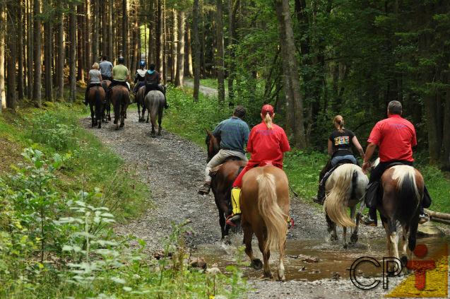 No Turismo Rural, trilhas e cavalgadas   Artigos Cursos CPT