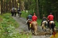 No Turismo Rural, trilhas e cavalgadas!