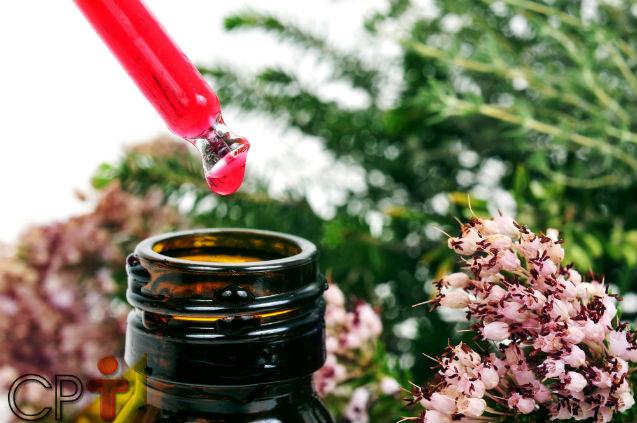 Terapia floral e fitoterapia: qual a diferença?   Dicas Cursos CPT