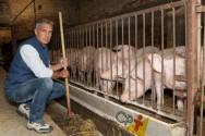 Especialista: Pessoas desejam consumir carne com qualidade ética!