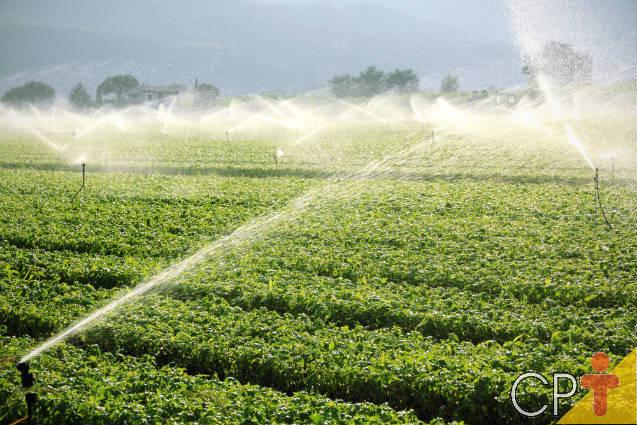 Conheça os sistemas de irrigação por aspersão convencional
