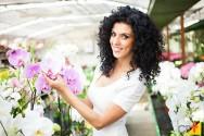 Aprenda a prevenir o ataque de fungos em suas orquídeas