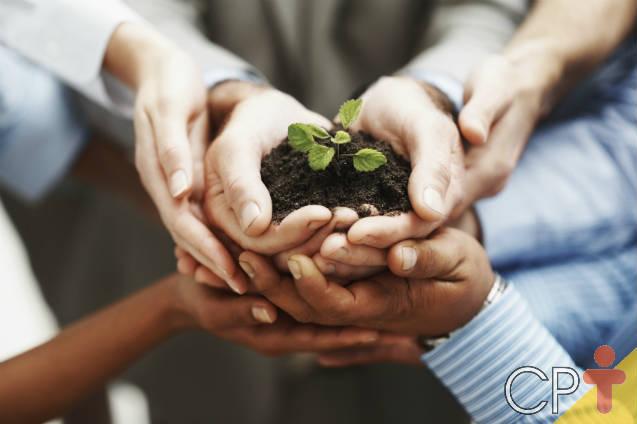 Financiamento para restauração ecológica e economia florestal