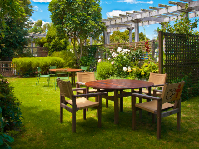 Antes de plantar flores e árvores, estude o espaço disponível!   Artigos Cursos CPT