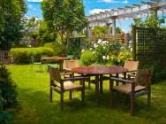 Antes de plantar flores e árvores, estude o espaço disponível!