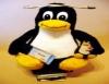 Linux, sistema operacional grátis, eficiente e funcional