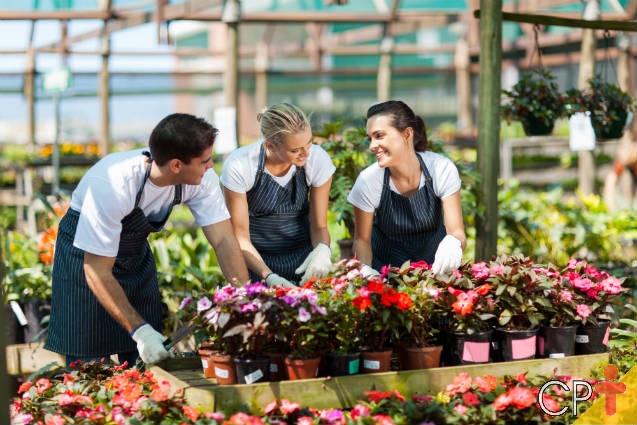 02 de setembro: Dia do Florista