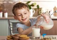 Você sabe a diferença entre os tipos de leite?