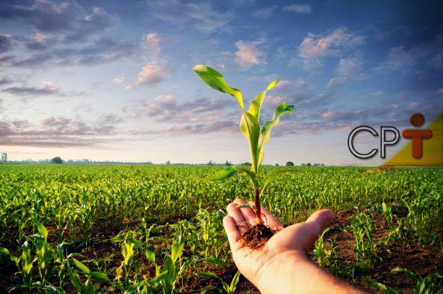 Você sabe o que é e para que serve a matraca, na agricultura?   Artigos Cursos CPT